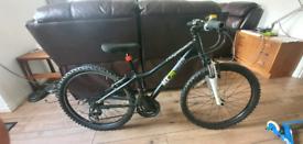 Ridgeback mx24 terrain boys bike