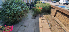 Proffesional Gardener - £25phr - free quotations
