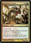 MTG Hydra