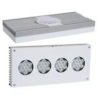 Hydra Fifty Two LED lighting