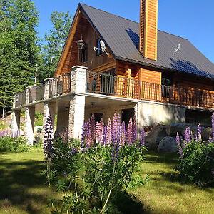 Maison scandinave en bois rond sur le bord de l'eau