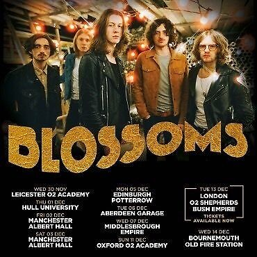 2 x Blossoms Tickets Manchester Albert Hall Sat 03/12