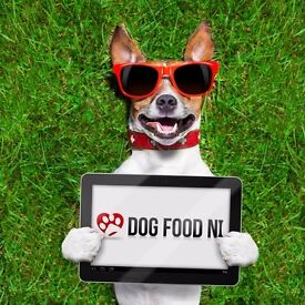 Wholesome, Natural, Grain free Hypoallergenic dog food