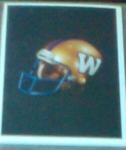 1992 AW Sports Winnipeg Blue Bombers Team Set of 21 cards MINT