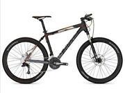 Focus Fahrrad