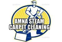 CARPET STEAM CLEANING - UPHOLSTERY -TILE AND GROUT