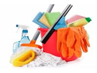 Domestic Cleaner Available 5* service, CRB checked