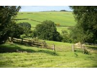 **Rare opportunity!** 5 Day Full Livery between in a beautiful setting between Bristol and Bath