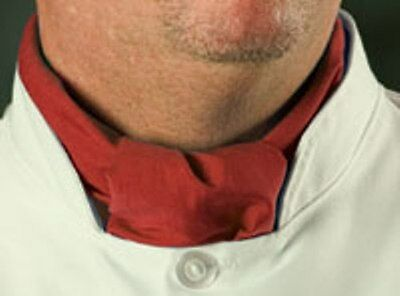 Brand New Chef Baker Neckerchief Red White Black Blue Green Burgundy Nice
