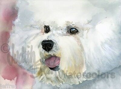 Bichon Frise Dog Art Print of Watercolor Painting Judith Stein Signed CURLY CUE Bichon Frise Dog Art