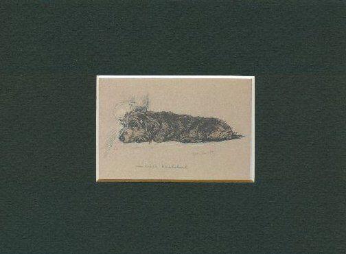 -- Wirehaired Dachshund Dog Art Print - Dawson CLEARANCE