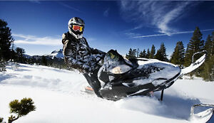 SNOWMOBILE, ATV, UTV, AND SMALL ENGINE REPAIR AND ACCESSORIES Strathcona County Edmonton Area image 1