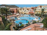 Tenerife apartment, Los Cristianos, available now, 1 bedroom, very nice complex,