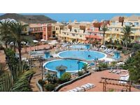 Tenerife 1 bedroom apartment available 26th August Los Cristianos