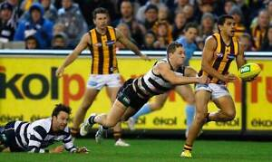 AFL FINAL GEELONG v HAWTHORN Level 1 Wing Tickets M21 Croydon North Maroondah Area Preview