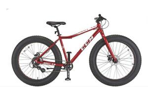 Brand new Fat Tire bike