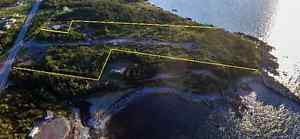 11.8 Acres of Land in Hearts Delight! So Many Possibilities!