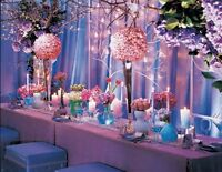 Wedding Planner for your Special Day! Limited time save $250!