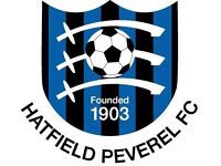 Hatfield Peveral under 8 'Reds Sharks'