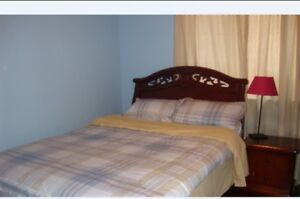 Newmarket single beroom for long or short term rental