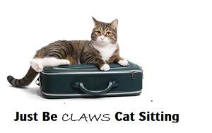 Cat Sitter in Cambridge