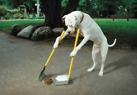 Call of Doodie Pet Waste Cleanup and Removal