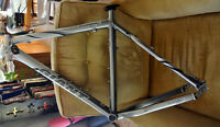 "21"" Giant Iguana Disc Mountain Bike Frame  (XL)"