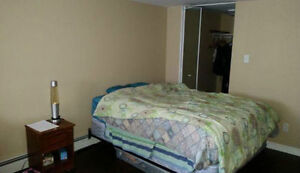 Downtown - Cozy Bedroom for Rent! - Quinpool Area