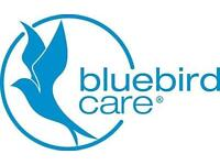 Home Care Assistant opportunities at Bluebird Care-FULL TRAINING GIVEN