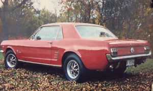 Looking for 1966 Ford Mustang Coupe