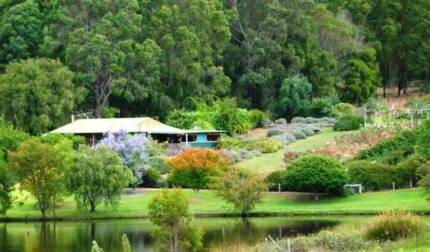 Iconic South West Cafe and Gift Shop - Freehold Pemberton Manjimup Area Preview