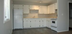 Newly Renovated 1 br Apt Unit, W/D-in-Unit, Apr.1, Chilliwack