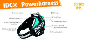Dog Harnesses - Easy to fit and adjustable harnesses - Julius K9 Downtown-West End Greater Vancouver Area image 5