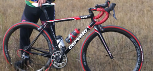 Cervelo R3 full carbon with Reynolds Clincher carbon wheelset