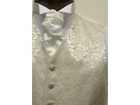 WEDDING WAISTCOAT FOR MENS GOLD RUMOURS SIZE 22 TO 64