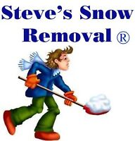 SNOW REMOVAL, SHOVELING, PLOWING, BLOWING