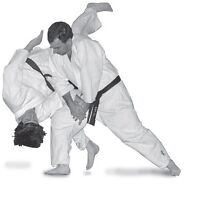 Martial Arts - AIKIDO - an art derived from the Samurai