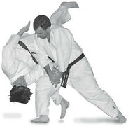 Martial Arts Classes - Aikido - The Art of the Samurai