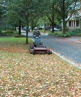 fall clean up -leaves / leaf removal RAMASSAGE DE FEUILLES