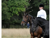 Freelance Rider and Instructor