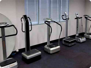 Whole Body Vibration Machine Buyers Guide Cambridge Kitchener Area image 1