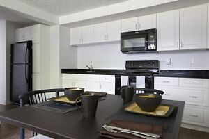 Student Apartments for Rent! Great for Sharing! WIFI Included! Kitchener / Waterloo Kitchener Area image 10