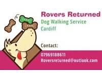 Rovers Returned Dog Walking Services Cardiff (Thornhill, Whitchurch, Rhiwbina, Roath, Heath)