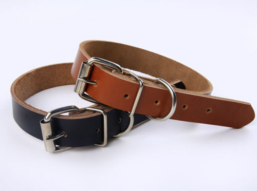 The Complete Guide to Choosing the Right Material for Your Dog's Collar