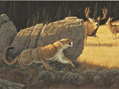 Packin In by Tom Mansanarez Elk Print 7x5