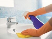 Domestic Cleaning / Residential Cleaner / Housekeeper / House Cleaning / Flat Cleaning