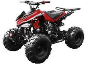 Sport Model 125M Youth ATV On Sale Limited Time Offer $699.99