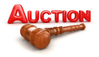 Auctioneer For Hire