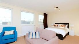 Double studio in zone 1 Westmister moments St James's park available furnished or unfurnished
