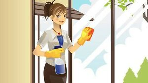 Experienced Housekeeper with availability  Kitchener / Waterloo Kitchener Area image 1